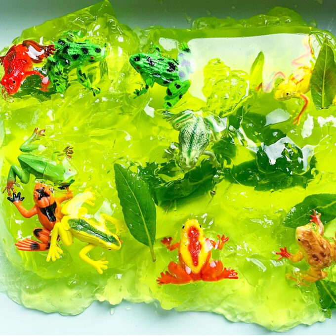 Frog jelly sensory play